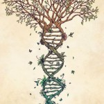 Ancestral Healing? Free your Bloodline…